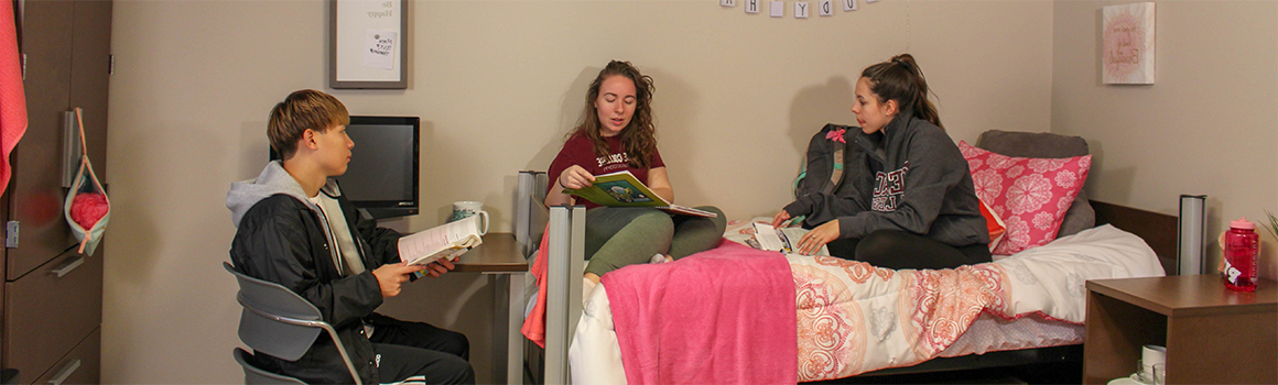 students studying in a residence hall room